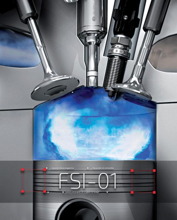 fsi-01