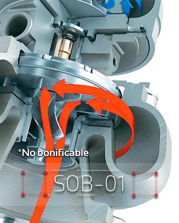 sob-1_no_bonificable